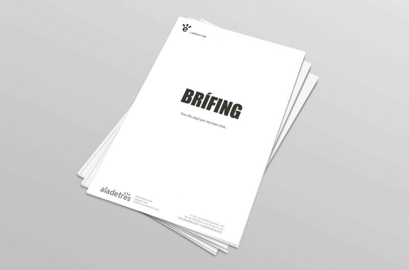 Template Briefing per a nova web